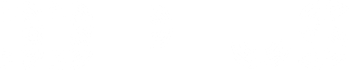 33plus_logo_lille